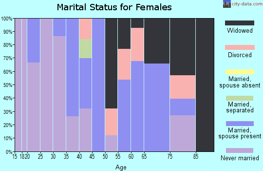Zip code 25507 marital status for females