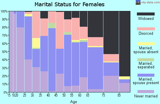 Zip code 25601 marital status for females