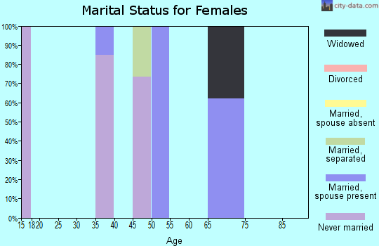 Zip code 25846 marital status for females