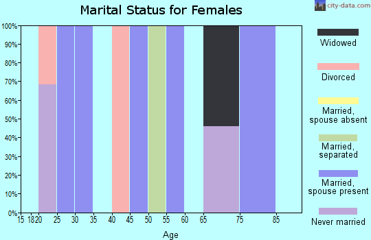 Zip code 25879 marital status for females