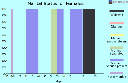 Zip code 25928 marital status for females