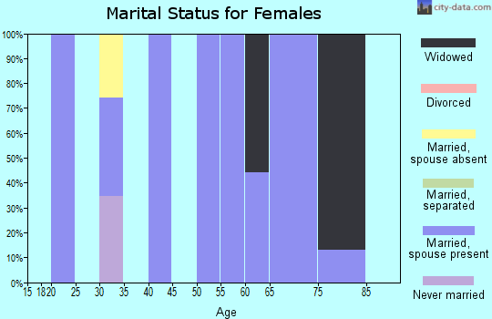 Zip code 25979 marital status for females