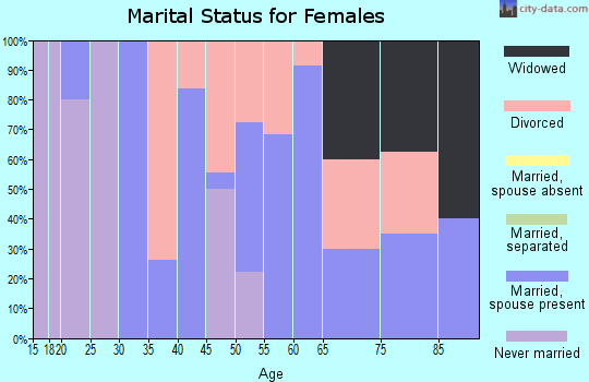 Zip code 26030 marital status for females