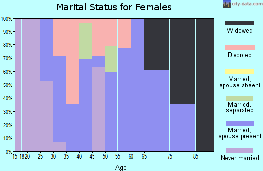 Zip code 26035 marital status for females