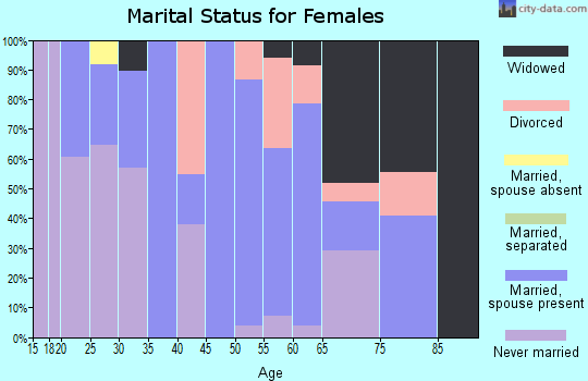 Zip code 26040 marital status for females