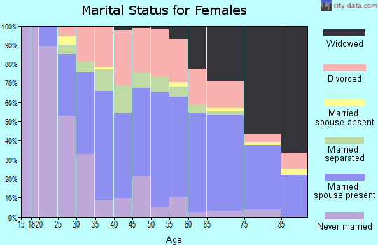 Zip code 26062 marital status for females
