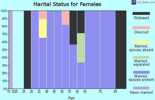 Zip code 26133 marital status for females