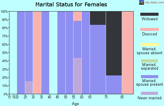 Zip code 26169 marital status for females