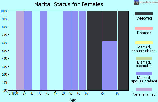 Zip code 26178 marital status for females
