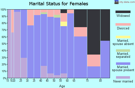 Zip code 26181 marital status for females