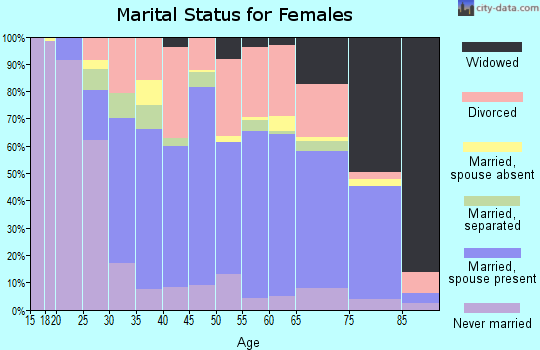 Zip code 26241 marital status for females