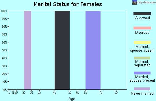 Zip code 26302 marital status for females