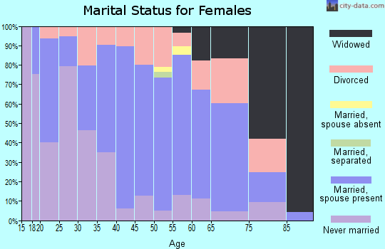 Zip code 26537 marital status for females