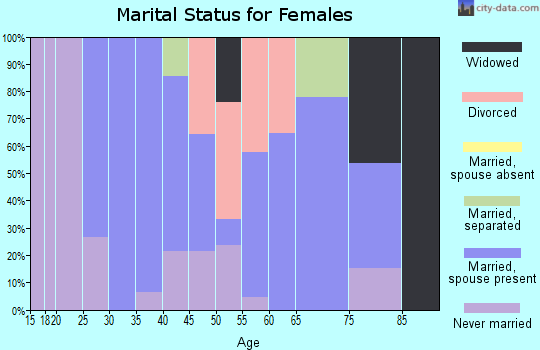 Zip code 26574 marital status for females