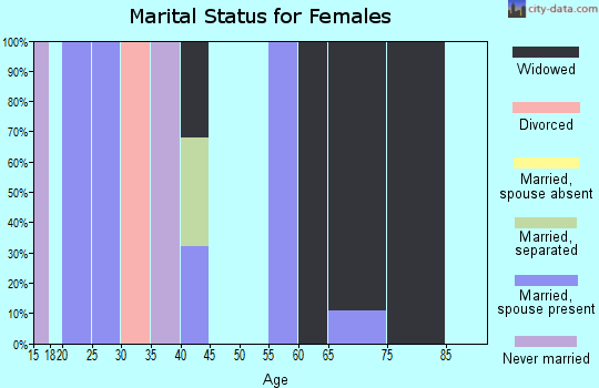 Zip code 28076 marital status for females