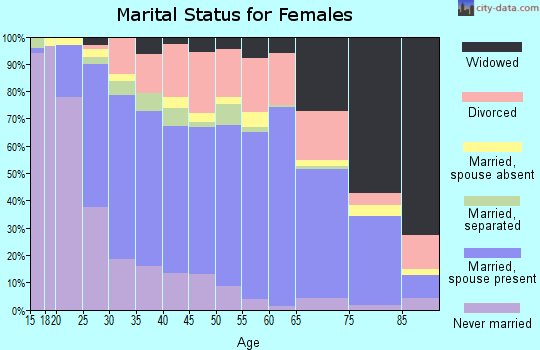 Zip code 28092 marital status for females