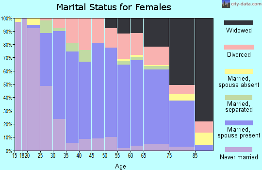 Zip code 28139 marital status for females