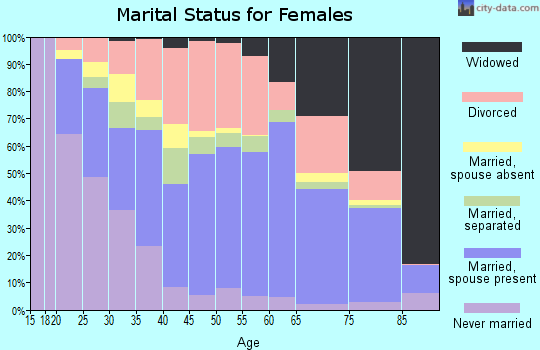 Zip code 28304 marital status for females