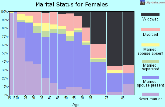 Zip code 28306 marital status for females