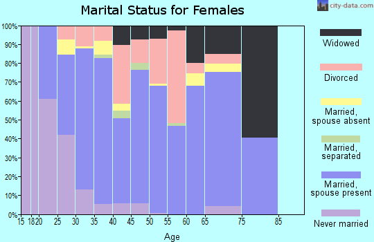 Zip code 28326 marital status for females