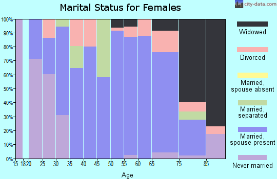 Zip code 28479 marital status for females