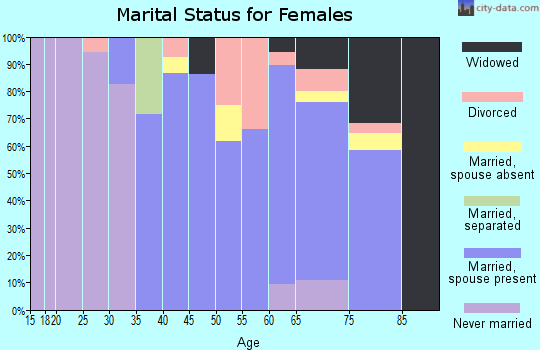 Zip code 28480 marital status for females