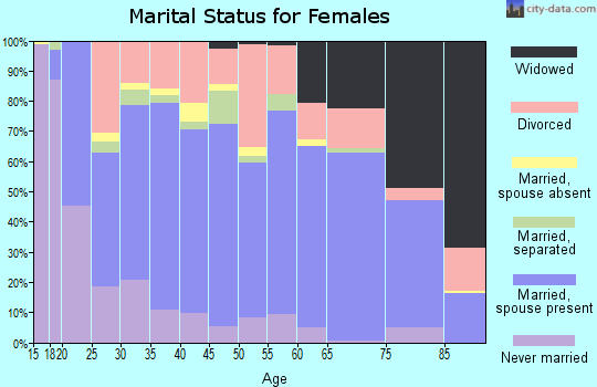 Zip code 28613 marital status for females