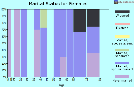Zip code 28631 marital status for females