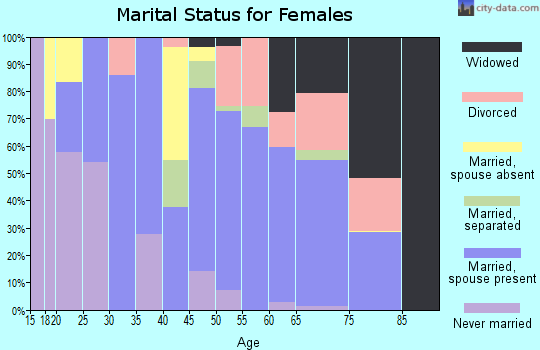 Zip code 28690 marital status for females