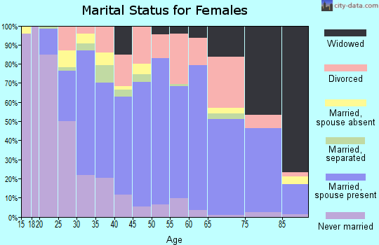 Zip code 28704 marital status for females