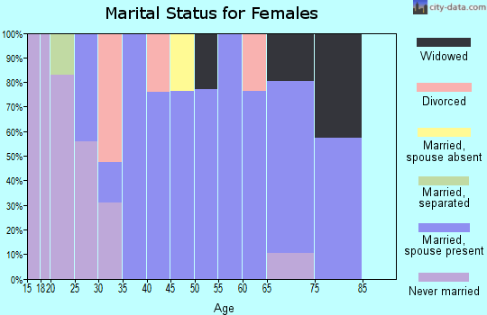 Zip code 28740 marital status for females