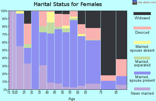 Zip code 28753 marital status for females