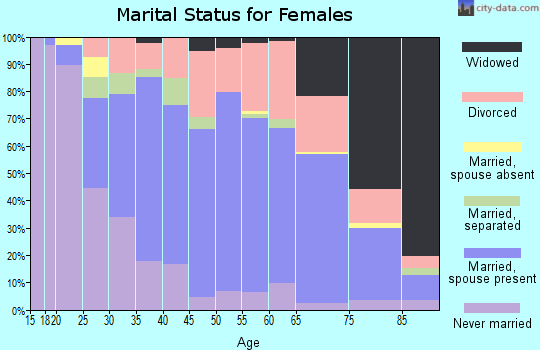 Zip code 28804 marital status for females