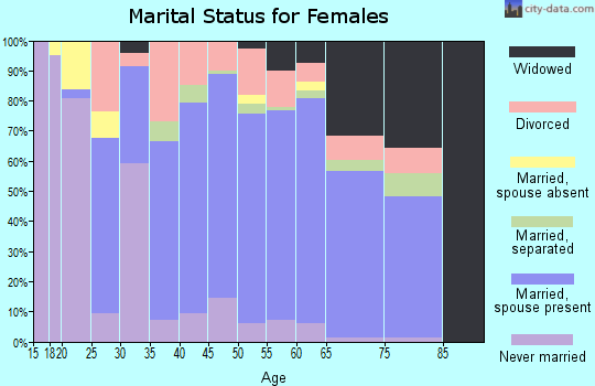 Zip code 29356 marital status for females