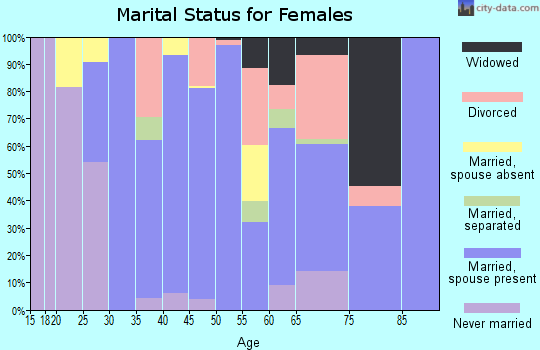 Zip code 29435 marital status for females