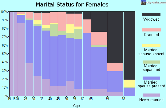 Zip code 29461 marital status for females