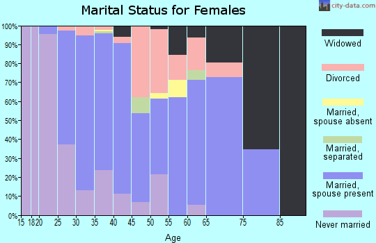 Zip code 29492 marital status for females