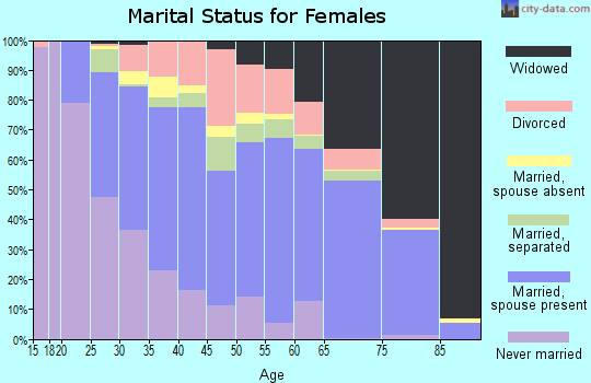 Zip code 29527 marital status for females