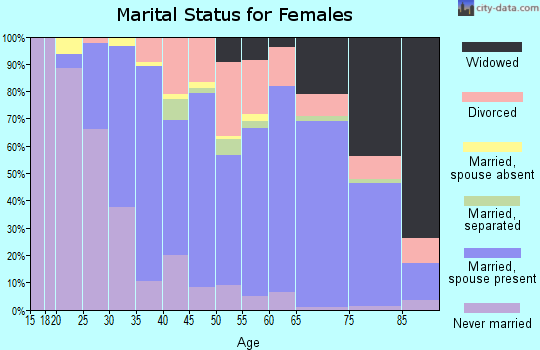 Zip code 29576 marital status for females