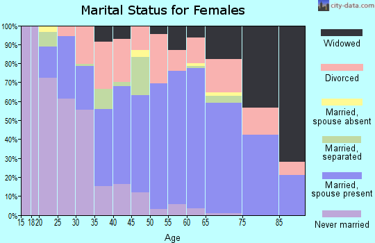 Zip code 29582 marital status for females