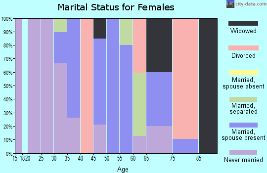 Zip code 29592 marital status for females