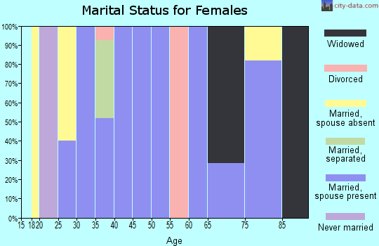 Zip code 29667 marital status for females