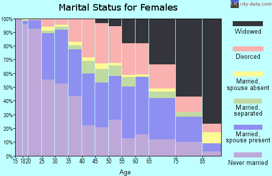 Zip code 31204 marital status for females