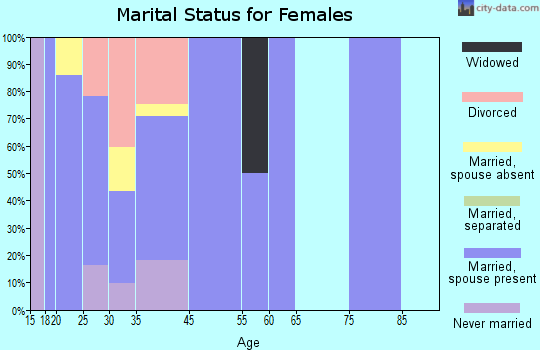 Zip code 31333 marital status for females