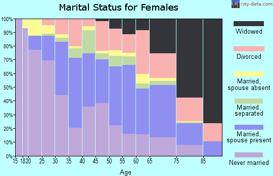 Zip code 33135 marital status for females