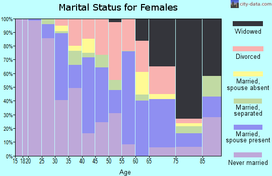 Zip code 33170 marital status for females