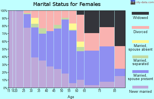 Zip code 33606 marital status for females