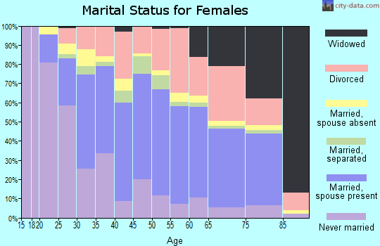 Zip code 33615 marital status for females