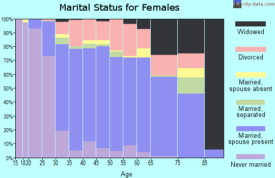 Zip code 33647 marital status for females