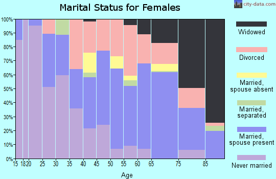 Zip code 33706 marital status for females